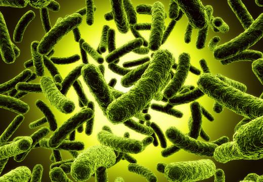 Rola bakterii w zaostrzeniu astmy