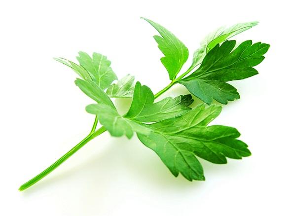 Dobrodziejstwa ogródka pomocne też w alergii
