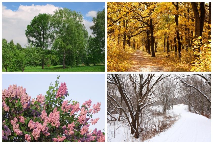 Wciąż trudno o ulgę w alergiach sezonowych