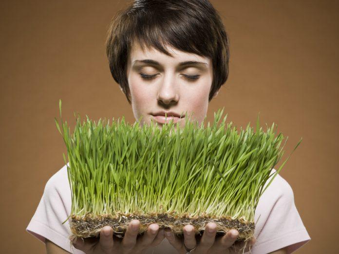 Problemy piłkarzy - uczulenie na trawę