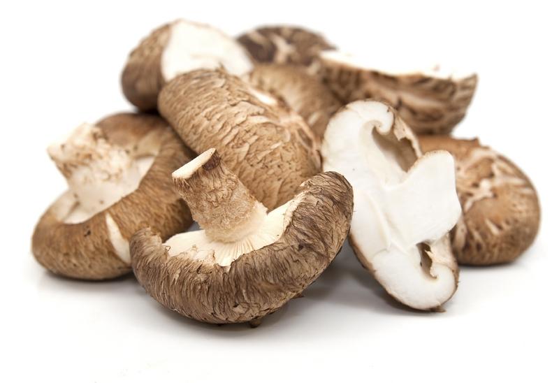 Mykoterapia - wszystko o leczeniu grzybami