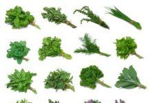 Które zioła i suplementy blokują Twoje leczenie?