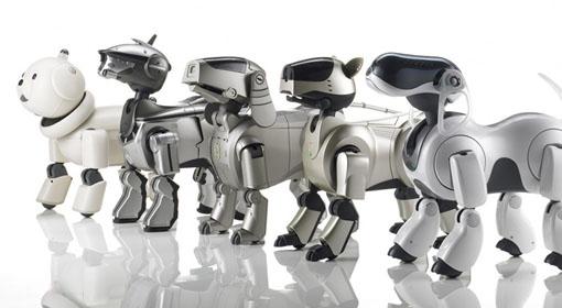 Pies-robot alternatywą dla alergików?