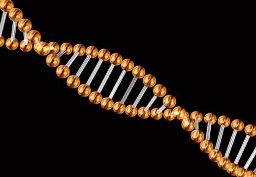 Dobre geny to za mało