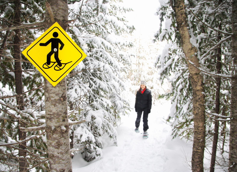 Zimowe zaostrzenia chorób alergicznych
