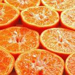 Czym jest nietolerancja fruktozy?