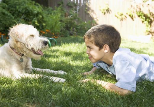 Życie z astmą, alergią i psem