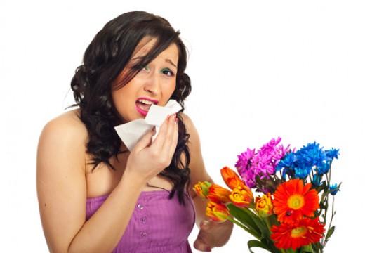 Donosowa próba prowokacyjna  przy alergii
