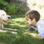 Czy alergię na zwierzęta da się wyleczyć?