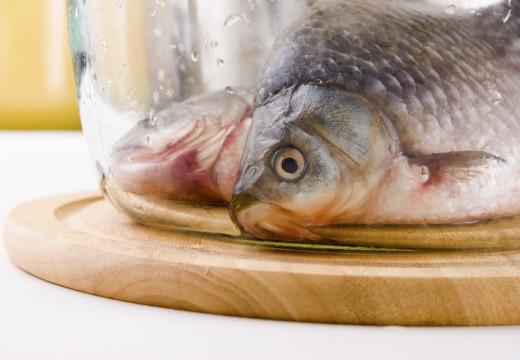 Alergia na ryby