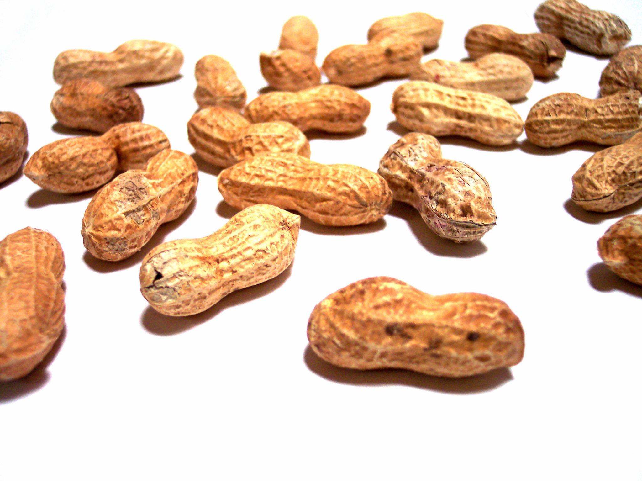 705637_com_nuts-1
