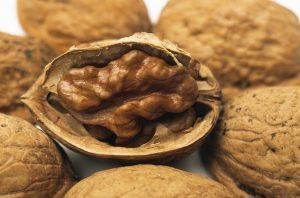 Alergia pokarmowa - plaga XXI wieku