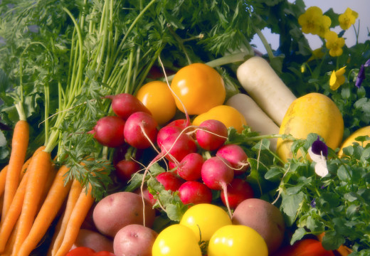 Julia Kamińska przeszła na dietę wegetariańską. Dlaczego?
