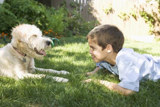 Zabawy z psem zapobiegają alergii?