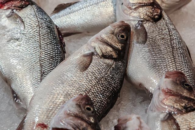 alergia-na-ryby