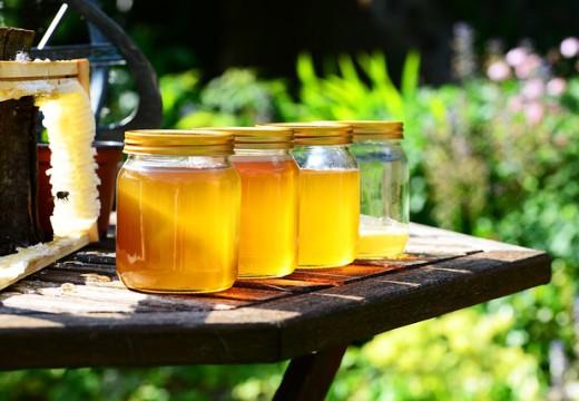 Alergia na miód – co warto o niej wiedzieć?