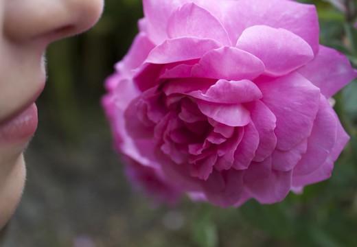 Alergiczny nieżyt nosa – jak sobie z nim poradzić?
