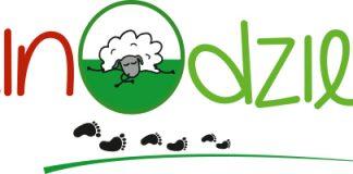 Merinodzieciaki-logo