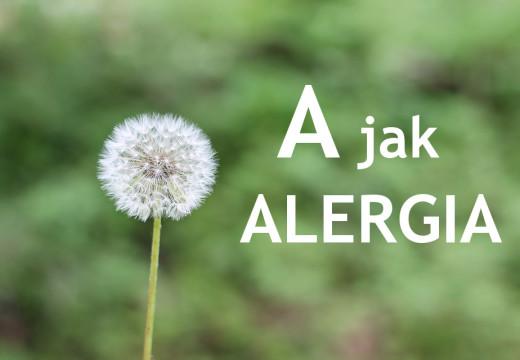 A jak alergia, czyli co warto wiedzieć o uczuleniach