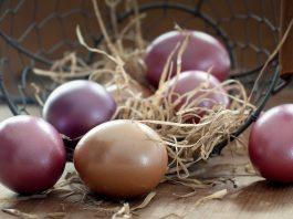 sposoby farbowania jajek