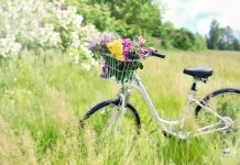 alergia na pyłki traw