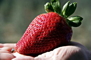 alergia na truskawki