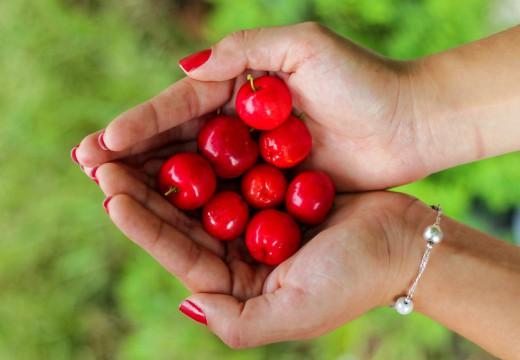 Alergia na czereśnie – przyczyny i objawy