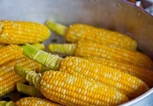 Alergia na kukurydzę – przyczyny i objawy