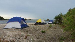 alergia a wakacje pod namiotem