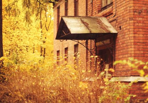 Alergia na kurz – dlaczego jesienią nawraca ze zdwojoną siłą?
