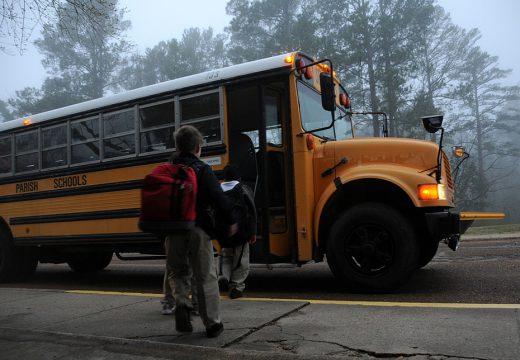 Alergia u dzieci a wycieczki szkolne