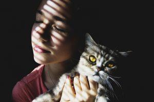uczulenie na kota