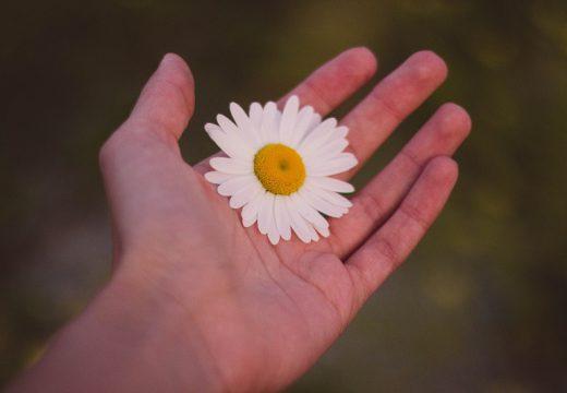 Atopowe zapalenie skóry – dłonie. Jak zadbać o skórę rąk?