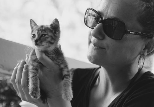 Alergia na kota – jak sobie z nią radzić?