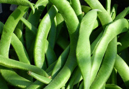Rośliny strączkowe – jeść czy lepiej unikać?