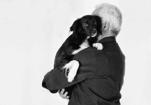 Alergia na sierść – czy włosie psa na ubraniu koleżanki też uczula?