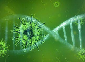 Rekordowa liczba zakażeń koronawirusem