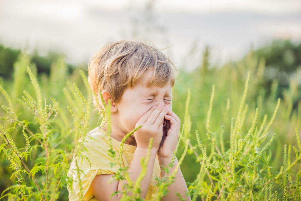Skutki nieleczonej alergii - efekty przerwania odczulania