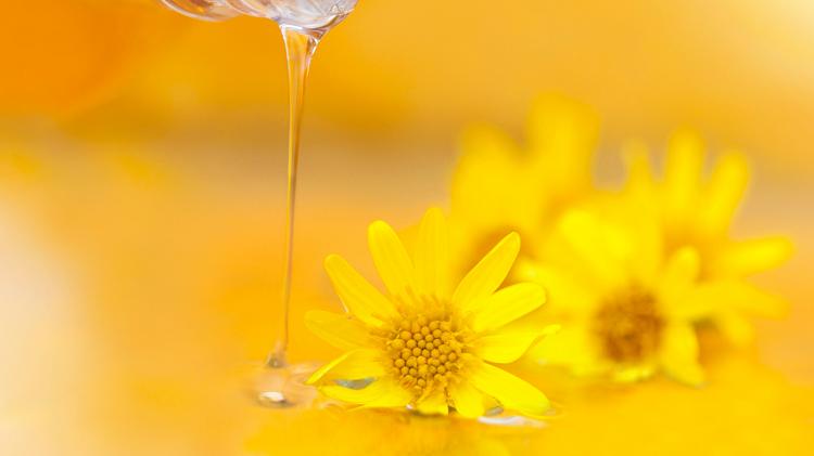 Jak wybierać olejki eteryczne